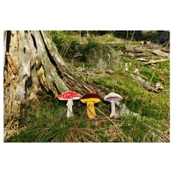 dřevěná vkládačka LESNÍ HOUBY